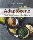 Adaptogene – Die Elitepflanzen der Natur