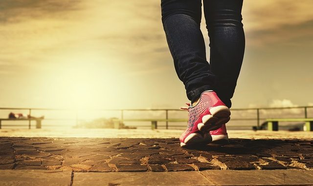 Sojaprotein für Sport und Freizeit