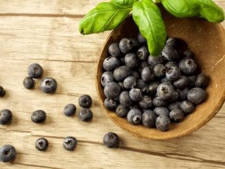 Maqui Beere Super Food - gesunde Beeren