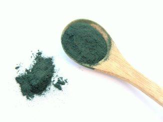 Die Spirulina Alge kann ohne Gefahr einer Verunreinigung kultiviert werden